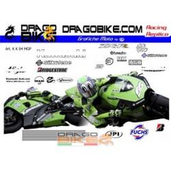 Kit kawasaki motoGP 2004...