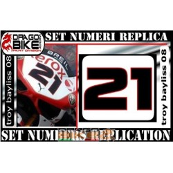 Race number 21 Troy Bayliss 08