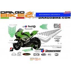Kit Adesivo Race Replica Kawasaki MotoGP 2006