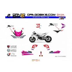 Stickers Kit Aprilia Total TS  54 Reggiani Tribute
