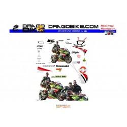 Race stickers kit Kawasaki SBK 2013 Tom Sykes