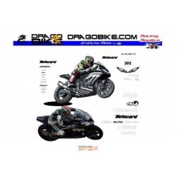 Race stickers kit Kawasaki SBK 2013 test
