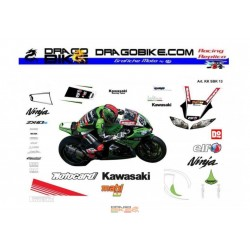 Kawasaki SBK 2013 replica Race stickers kit